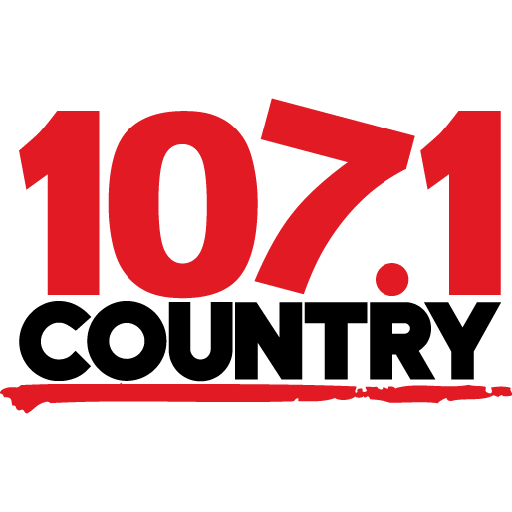 Icon black logo country1071 512