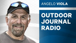 Outdoor journal radio 300